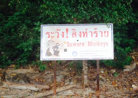 Monkey Island caution sign