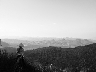 Lam, our friend and one of the chefs on the farm, took us on a bushwhacking hike