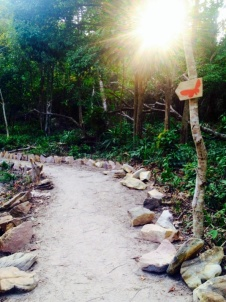 Path to the butterfly garden on Koh Rong Island